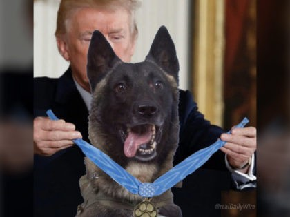 Anti-Trump leftists reacted negatively on Twitter Wednesday to President Trump's tweet of a photoshopped image honoring the hero dog that chased Islamic State (ISIS) founder and leader, Abu Bakr al-Baghdadi, into a tunnel.