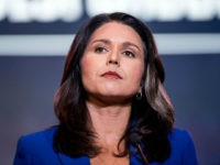 Tulsi Gabbard Uses Clinton Attack to Raise Campaign Funds