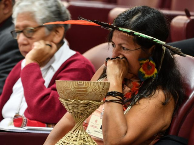 A representative of one of the Amazon Rainforest's ethnic groups attends the morning session, on the second day of the Special Assembly of the Synod of Bishops for the Pan-Amazon Region on October 8, 2019 in the Vatican. - Pope Francis is gathering Catholic bishops at the Vatican to champion …