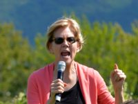 Democratic presidential candidate Elizabeth Warren speaks to supporters during a campaign stop and town hall at Toad Hill Farm in Franconia, New Hampshire, overlooking the White Mountains on August 14, 2019. (Photo by JOSEPH PREZIOSO / AFP) (Photo credit should read JOSEPH PREZIOSO/AFP/Getty Images)