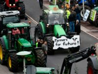 "Farmers on tractors protest with a placard reading ""Farmers for future"" against the German government's agricultural policy including plans to phase out glyphosate pesticides and to implement more animal protection, during a demonstration in Bonn, western Germany on October 22, 2019. (Photo by Ina FASSBENDER / AFP) (Photo by INA …"