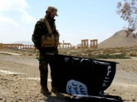 """A member of the Syrian pro-government forces carries an Islamic State (IS) group flag as he stands on a street in the ancient city of Palmyra on March 27, 2016, after troops recaptured the city from IS jihadists. President Bashar al-Assad hailed the victory as an """"important achievement"""" as his …"""