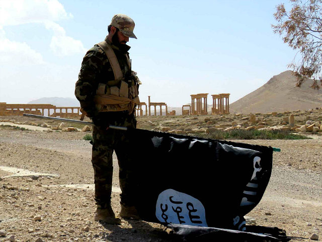 "A member of the Syrian pro-government forces carries an Islamic State (IS) group flag as he stands on a street in the ancient city of Palmyra on March 27, 2016, after troops recaptured the city from IS jihadists. President Bashar al-Assad hailed the victory as an ""important achievement"" as his …"