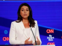Democratic presidential candidate Rep. Tulsi Gabbard, D-Hawaii, left, and businessman Tom Steyer participate in a Democratic presidential primary debate hosted by CNN/New York Times at Otterbein University, Tuesday, Oct. 15, 2019, in Westerville, Ohio. (AP Photo/John Minchillo)