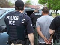 ICE Enforcement and Removal Operations officers place a criminal alien in custody. (File Photo: U.S. Immigration and Customs Enforcement/Enforcement and Removal Operations)