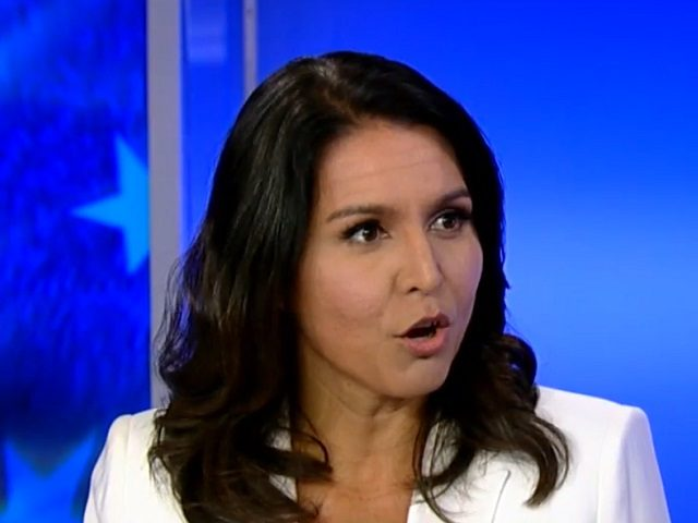 Tulsi Gabbard: Democrats Are Trying to Turn America into a 'Police State'