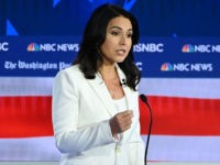 Democratic presidential hopeful Representative for Hawaii Tulsi Gabbard speaks during the fifth Democratic primary debate of the 2020 presidential campaign season co-hosted by MSNBC and The Washington Post at Tyler Perry Studios in Atlanta, Georgia on November 20, 2019. (Photo by SAUL LOEB / AFP) (Photo by SAUL LOEB/AFP via …