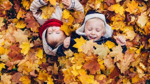 Children Enjoy in Autumn Leaves. Autumn Games.