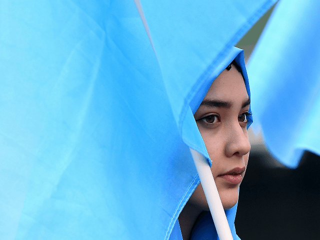 "A woman takes part in a protest march of Ethnic Uighurs asking for the European Union to call upon China to respect human rights in the Chinese Xinjiang region and asking for the closure of ""re-education center"" where some Uighurs are detained, during a demonstration around the EU institutions in …"