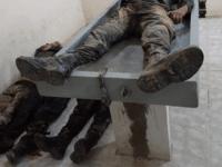 Oaxaca Cops