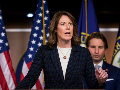 """WASHINGTON, DC - JANUARY 29: Rep. Cindy Axne (D-IA) speaks during news conference discussing the """"Shutdown to End All Shutdowns (SEAS) Act"""" on January 29, 2019 in Washington, DC. Also pictured is Rep. Dean Phillips (D-MN). (Photo by Zach Gibson/Getty Images)"""