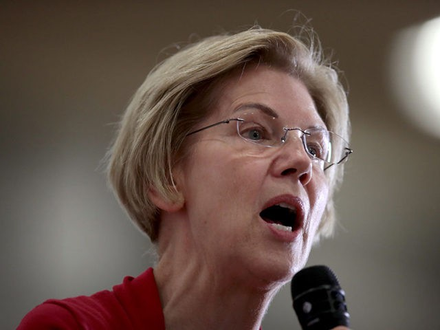 DUBUQUE, IOWA - NOVEMBER 02: Democratic presidential candidate Sen. Elizabeth Warren (D-MA) speaks to guests during a campaign stop at Hempstead High School on November 02, 2019 in Dubuque, Iowa. The 2020 Iowa Democratic caucuses will take place on February 3, 2020, making it the first nominating contest for the …