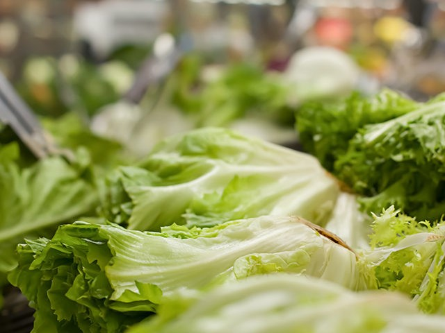 Concept of healthy and organic food. Lettuce salad at supermarket.