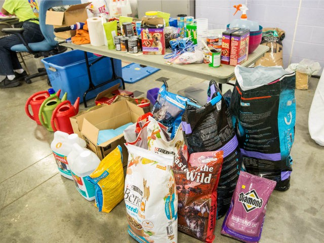 Pet food and supplies donated to the Delco Center in east Austin Thursday, August 31, 2017. Austin Animal Center has been assisting in caring for the animals since the shelter opened to Hurricane Harvey evacuees. / AFP PHOTO / SUZANNE CORDEIRO (Photo credit should read SUZANNE CORDEIRO/AFP via Getty Images)