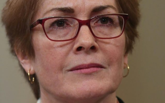 5 key moments during Marie Yovanovitch's impeachment testimony