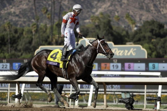 The Latest Mitole Wins Breeders Cup Sprint In Final
