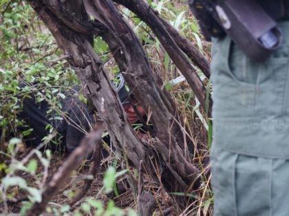 A Rio Grande Valley Sector Border Patrol agent finds a migrant woman on a Mexican cartel human smuggling trail near the Rio Grande. (Photo: Bob Price/Breitbart Texas)