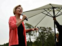Elizabeth Warren Calls for 'Blue New Deal'
