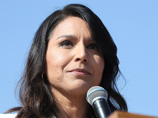 LOS ANGELES, CALIFORNIA - NOVEMBER 11: Democratic presidential candidate U.S. Rep. Tulsi Gabbard (D-HI) speaks during the inaugural Veterans Day L.A. event held outside of the Los Angeles Memorial Coliseum on November 11, 2019 in Los Angeles, California. The stadium's historic torch was lit at the ceremony to mark the …