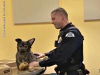 Officer Receives K9 Tribute Gift