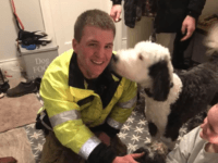 "On Christmas Eve, a dog Charlie ran away, broke through the ice & got stuck in a marsh. Family tried to rescue him, but broke through the ice. Because they were safe on arrival, firefighters in ""mustang suits"" (ice rescue gear) helped find & reunite Charlie with his family."