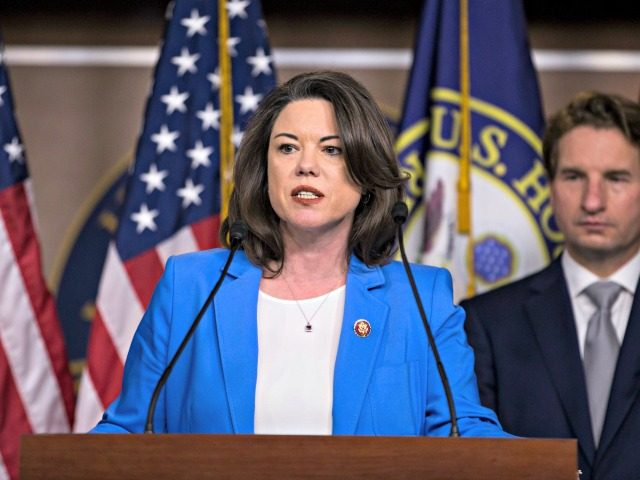 """WASHINGTON, DC - JANUARY 29: Rep. Angie Craig (D-MN) speaks during news conference discussing the """"Shutdown to End All Shutdowns (SEAS) Act"""" on January 29, 2019 in Washington, DC. Also pictured is Rep. Dean Phillips (D-MN). (Photo by Zach Gibson/Getty Images)"""