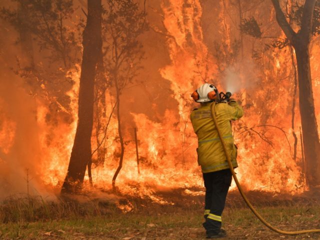 TOPSHOT - A firefighter conducts back-burning measures to secure residential areas from encroaching bushfires in the Central Coast, some 90-110 kilometres north of Sydney on December 10, 2019. - Toxic haze blanketed Sydney on December 10 triggering a chorus of smoke alarms to ring across the city, as Australians braced …