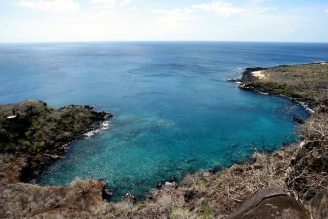 Ecuador declares emergency after Galapagos fuel spill