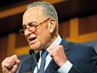 Chuck Schumer Calls for Probe into Treatment of Protesters Outside White House