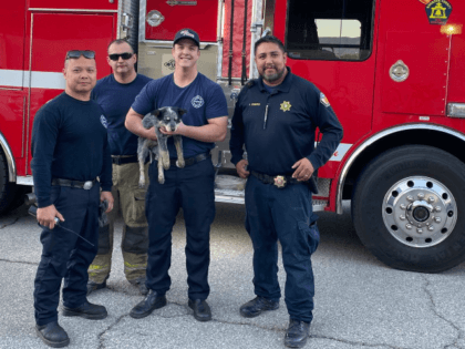Awesomeness from  @CALFIRERRU  and our officer (Jose Cisneros) & our amazing veterinary staffers. #WheeliePup #RivCoNOW