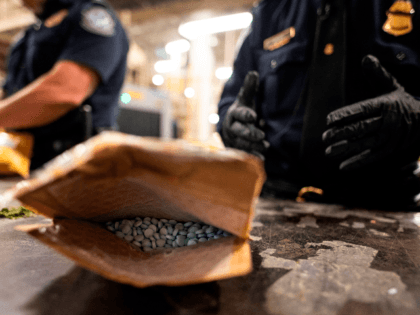 An officer from the US Customs and Border Protection, Trade and Cargo Division finds Oxycodon pills in a parcel at John F. Kennedy Airport's US Postal Service facility on June 24, 2019 in New York. - In a windowless hangar at New York's JFK airport, dozens of law enforcement officers …