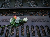 BERLIN, GERMANY - JANUARY 27: Roses left by mourners lie next to one of the many plaques detailing transports of Berlin Jews to concentration camps at the Gleis 17 (Track 17) on January 27, 2015 in Berlin, Germany. Thousands of people will come together today to remember and honour the …