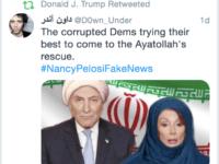 Donald Trump retweet (Screenshot / Twitter)