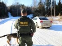 Houlton Sector Border Patrol K-9 team on patrol near the Canadian Border. (Photo: U.S. Border Patrol/Houlton Sector)