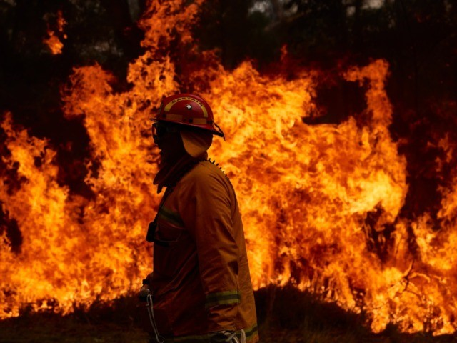 SYDNEY, AUSTRALIA - NOVEMBER 14: A CFA Member works on controlled back burns along Putty Road on November 14, 2019 in Sydney, Australia. Crews are working hard to gain the upper hand after devastating fires tore through areas near Colo Heights. Bushfires from the Gospers Mountain bushfire continue to burn. …