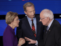 sanders warren steyer