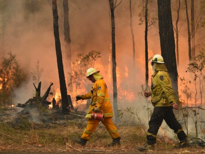 Firefighters create a back burn ahead of a fire front in the New South Wales town of Jerrawangala on January 1, 2020. - A major operation to reach thousands of people stranded in fire-ravaged seaside towns was under way in Australia on January 1 after deadly bushfires ripped through popular …