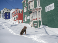 A residents makes their way through the snow in St. John's, Newfoundland on Saturday, Jan. 18, 2020. The state of emergency ordered by the City of St. John's is still in place, leaving businesses closed and vehicles off the roads in the aftermath of the major winter storm that hit …
