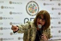Head of OAS anti-corruption mission in Honduras resigns
