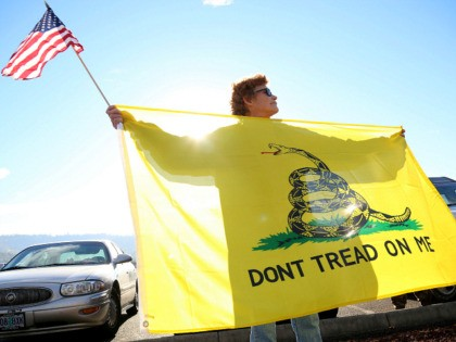 Leslie Corp holds up an American flag and the Gadsden flag while waiting outside of Roseburg Municipal Airport for President Barack Obama's arrival in Roseburg, Ore., Friday, Oct. 9, 2015. Gun-rights activists say they plan to protest when Obama visits here Friday to meet with families of victims of last …