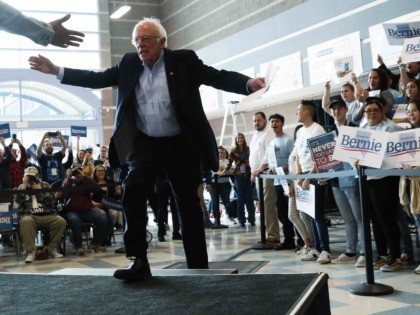 Bernie Sanders Nevada (Alex Wong / Getty)