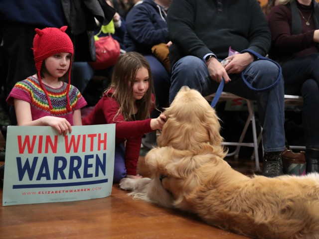 A girl pets a dog at a rally for Democratic presidential candidate Sen. Elizabeth Warren (D-MA) on February 09, 2020 in Concord, New Hampshire. The 2020 New Hampshire primary will take place on February 11, making it the second nominating contest for the Democratic Party in choosing their presidential candidate …