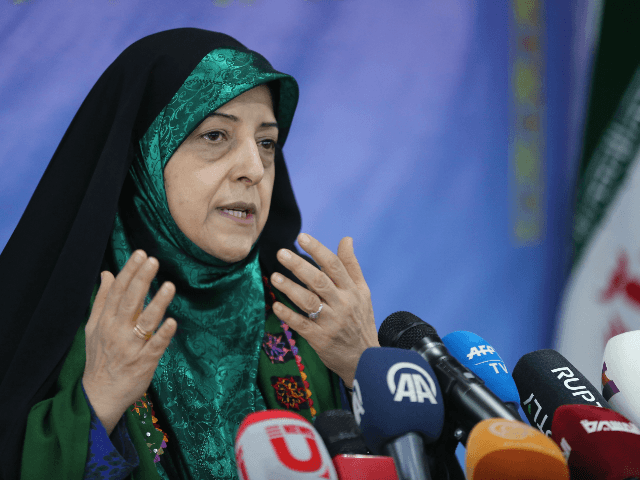Vice President of Iran for Women and Family Affairs, Massoumeh Ebtekar, speaks to reporters during a press conference in Tehran on January 29, 2019. (Photo by ATTA KENARE / AFP) (Photo credit should read ATTA KENARE/AFP via Getty Images)