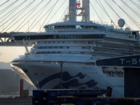 First British Citizen Dies of Coronavirus, Sixth Fatality From Quarantined Ship
