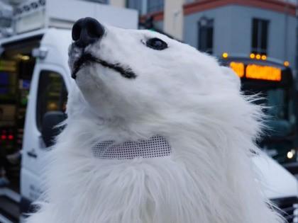 Joel Pollak Debates Climate Activist Dressed as Polar Bear Before Democrat Debate