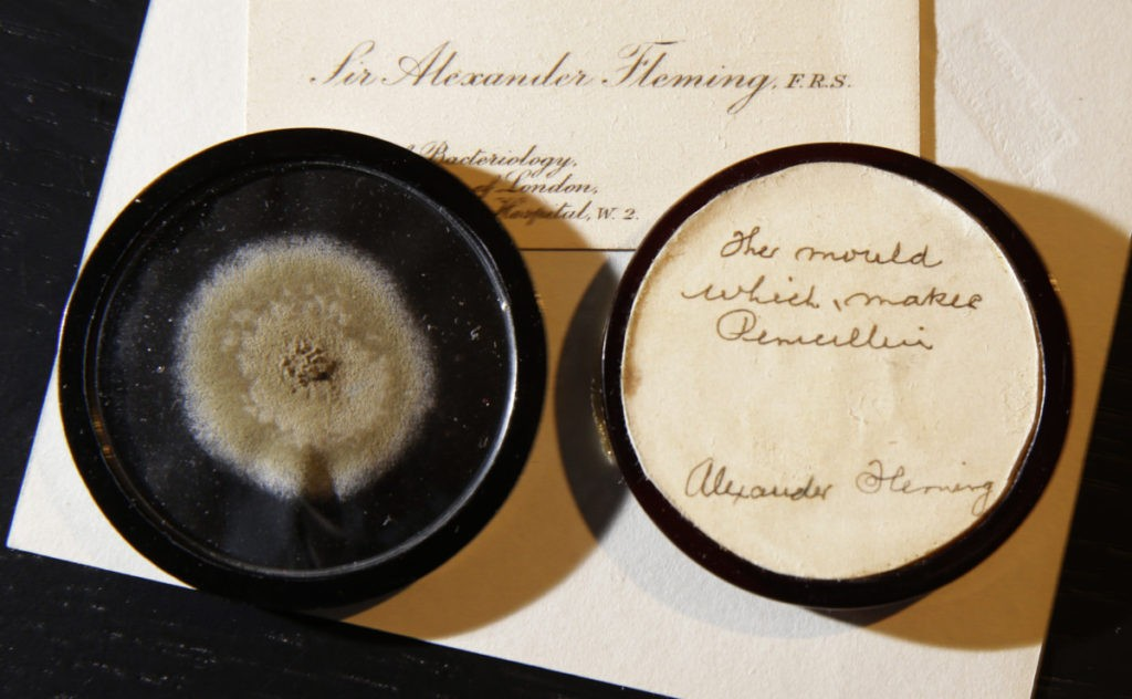 "In this photo taken on Thursday, Feb. 16, 2017, a capsule of original penicillin mold from which Alexander Fleming made the drug known as penicillin on view at Bonham's auction house in London. The international auction house Bonham's says it has sold a small, patchy disc of mold for $14,597. The off-white, nearly 90-year-old swatch of microbes has a rather extraordinary history: it was first created by Alexander Fleming to make penicillin, a revolutionary discovery that brought the world its first antibiotic. Bonham's sold the mold Wednesday, March 1 during an auction in London. The germs are preserved in a glass case and feature an inscription by Fleming on the back, identifying it as ""the mould that first made penicillin."" (AP Photo/Alastair Grant)"