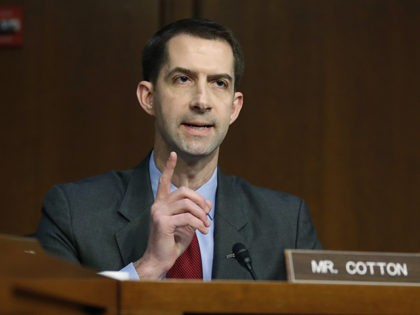 Sen. Tom Cotton, R-Ark., interrupts a fellow senator during a confirmation hearing of the Senate Intelligence Committee for CIA nominee Gina Haspel, on Capitol Hill, Wednesday, May 9, 2018 in Washington. (AP Photo/Alex Brandon)