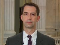 Cotton: 'A Child Mob' Runs the NYT