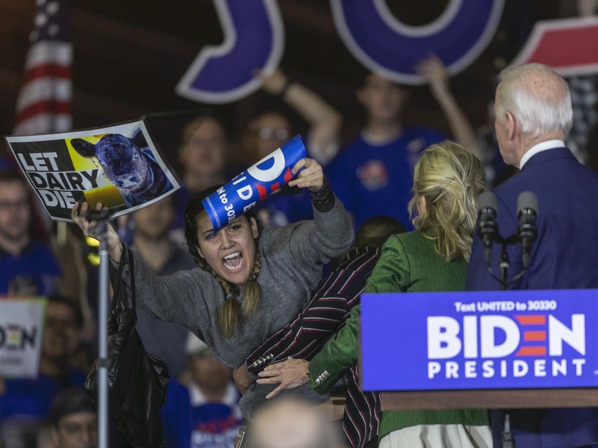 Dairy protest Joe Biden (David McNew / Getty)