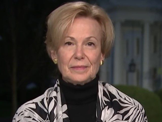 Birx: There Was No 'Full-Time Team' Working on COVID Response in Trump White House